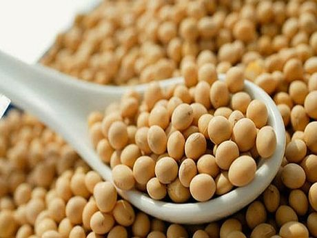 Nguoi Viet su dung GMO ca chuc nam nay? - Anh 1