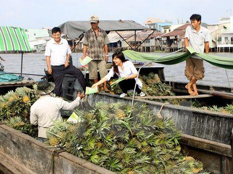 Binh Duong: Khoanh vung noi phat hien benh nhan Zika dau tien - Anh 1