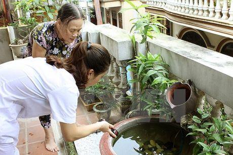 Xu ly o dich Zika tai TP HCM va Binh Duong - Anh 1
