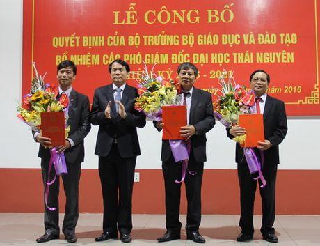 Bo GD&DT bo nhiem lai cac Pho Giam doc Dai hoc Thai Nguyen - Anh 1