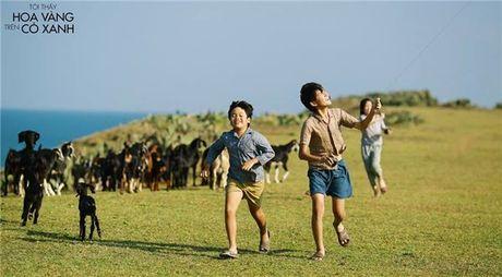 Ca tuan du lich Quy Nhon – Tuy Hoa chi voi 3 trieu dong - Anh 5