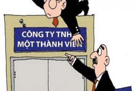 Thu tuc tang von dieu le cua cong ty TNHH mot thanh vien - Anh 1