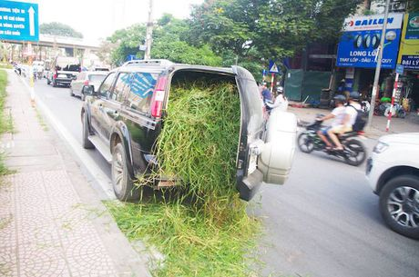Ngac nhien Ford Everest dung cho co o Ha Noi - Anh 4