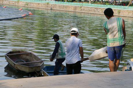 Ho Tay dan phuc hoi sau tham hoa ca chet hang loat - Anh 9