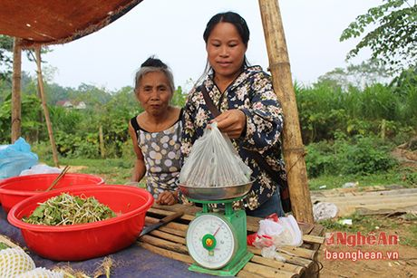 Mua luom hat de o mien tay Nghe An - Anh 8