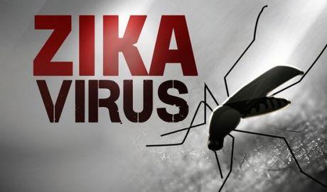 Truy tim virus Zika gay benh cho mot co gai Sai Gon - Anh 1