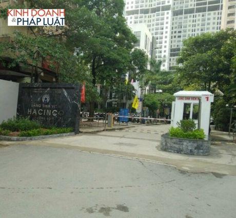 Chu dau tu Lang Hacinco xay dung hang loat ki ot cho thue trai phep - Anh 1
