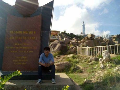 Phu Yen: Ve xu hoa vang co xanh ngam hai dang Dai Lanh - Anh 5