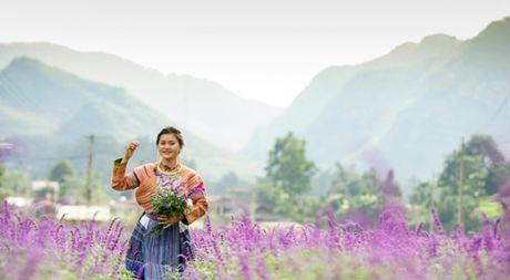 Gioi tre do xo den chup hinh o canh dong hoa oai huong Lao Cai - Anh 1