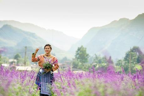 Gioi tre do xo den chup hinh o canh dong hoa oai huong Lao Cai - Anh 8