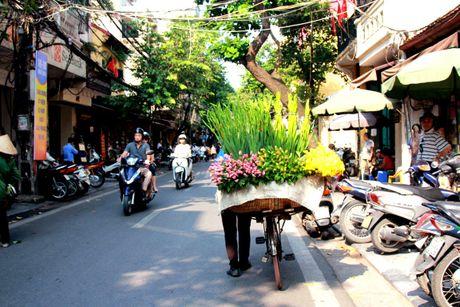 Mua thu pho co Ha Noi dep den nao long - Anh 3
