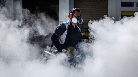 WHO: Vi rut Zika nhieu kha nang co the lay lan khap chau A - Anh 1