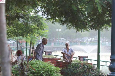 Chum anh Ho Tay sau nhung ngay ca chet hang loat - Anh 9