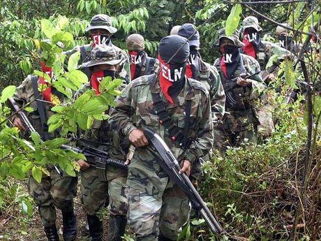 Colombia tiep tuc dam phan hoa binh voi ELN - Anh 1