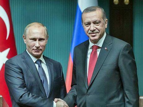 Tong thong Nga Putin ung ho quan khung bo rut khoi Alep - Anh 1
