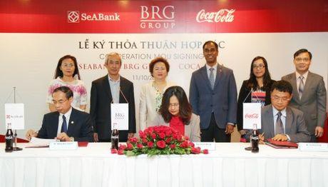 Coca-Cola Viet Nam, tap doan BRG va SeABank thoa thuan hop tac toan dien - Anh 1