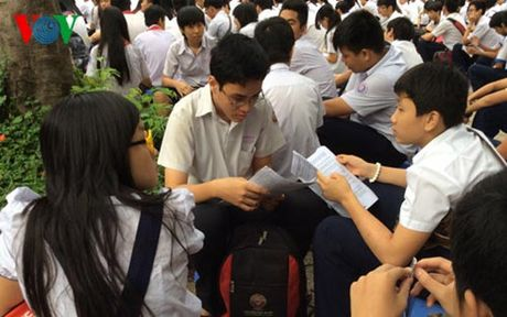 TP HCM quan ly day them tren co so 'tu nguyen' nhu the nao? - Anh 1