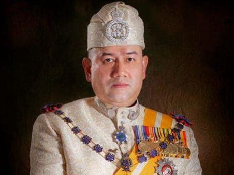 Hoi dong tri vi cac bang tai Malaysia bau chon Nha vua moi - Anh 1