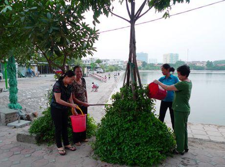 'La phoi xanh' cua phuong Phuong Liet - Anh 1