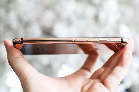 Tren tay iPhone 7 'ma vang' GoldenAce: Khi dang cap bi tra tron - Anh 6