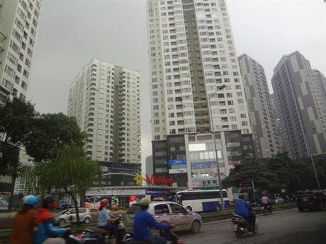Tai co cau: Phai bo phan bo nguon luc kieu hanh chinh xin – cho - Anh 1
