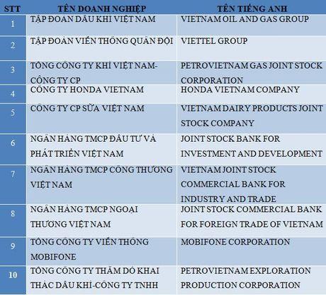 Lo dien 10 doanh nghiep nop thue lon nhat Viet Nam - Anh 2