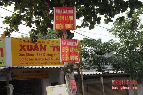 Thanh pho Vinh: Loan quang cao, rao vat! - Anh 3