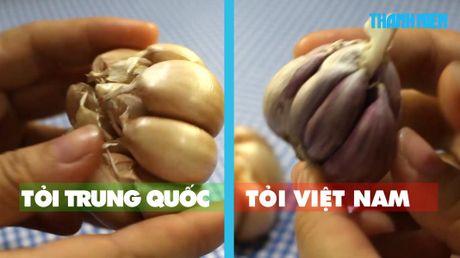 Cach giup ban phan biet rau cu Trung Quoc va Viet Nam de dang - Anh 3