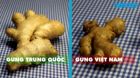 Cach giup ban phan biet rau cu Trung Quoc va Viet Nam de dang - Anh 5