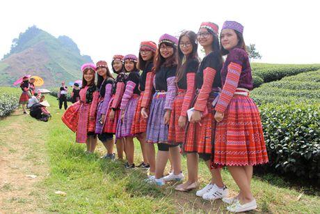 Ru nhau len thien duong co that o Moc Chau - Anh 2