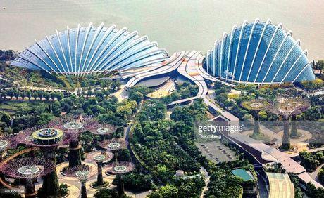 "Bi quyet tro thanh ""thanh pho trong vuon"" cua Singapore - Anh 5"