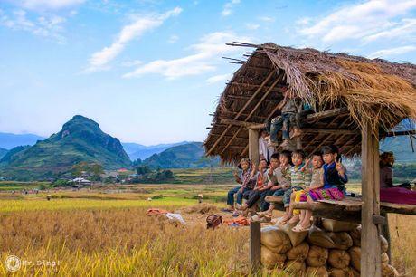 Cuoi thu, len dinh deo Khau Pha ngam mua vang tren nuong - Anh 15
