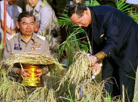 Bhumibol Adulyadej - trai tim, linh hon cua nguoi dan Thai - Anh 12