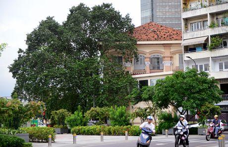 Nhung net kien truc tram tuoi tren pho di bo Nguyen Hue - Anh 15