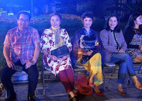 Nghe si hang dau lang dien anh lam 'nguoi mau' Festival ao dai Ha Noi - Anh 7