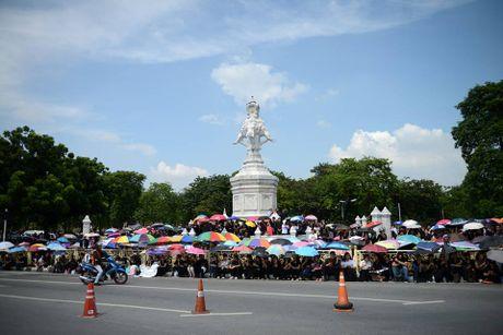 Hang van nguoi dan Thai Lan du le ruoc linh cuu Nha Vua - Anh 2