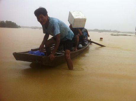 Nguoi va gia suc thao chay len duong Ho Chi Minh moi thoat lu - Anh 1