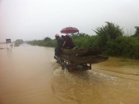 Nguoi va gia suc thao chay len duong Ho Chi Minh moi thoat lu - Anh 2