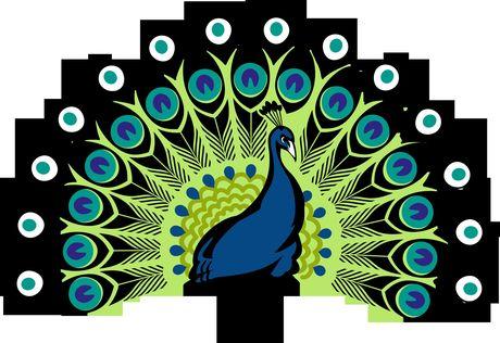 Giai ma y nghia phong thuy cua cac loai chim - Anh 4