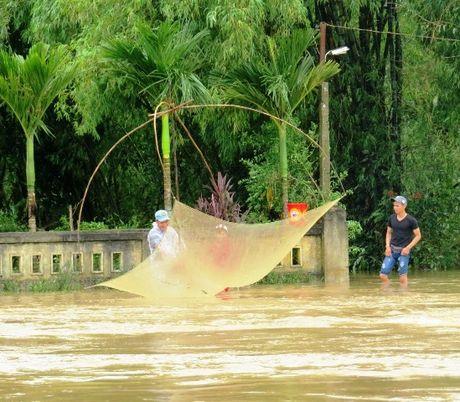 Thua Thien-Hue: Giao thong chia cat, nguoi dan di lai bang thuyen - Anh 1