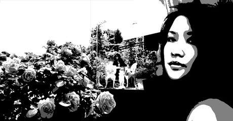 Truyen ngan: Hoa hong xac phao - Anh 1