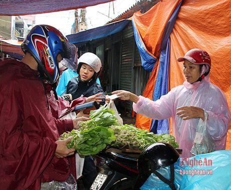 TP.Vinh: Cho thanh song, rau xanh dat hang - Anh 7
