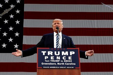Cao buoc nham vao Donald Trump chi la 'tro dan dung'? - Anh 1