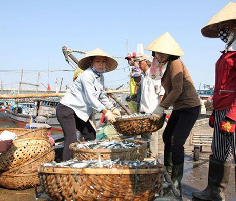 De nghi boi thuong cho nguoi nuoi thuy san vi anh huong su co moi truong Formosa - Anh 1