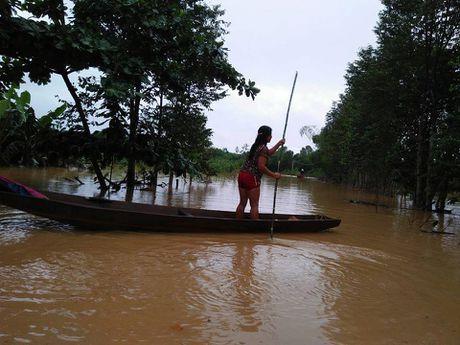 Gan 60 nghin hoc sinh Ha Tinh phai nghi hoc vi mua lu - Anh 2
