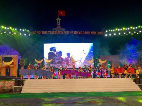 Khai mac Le hoi hoa tam giac mach lan thu 2 nam 2016 - Anh 2