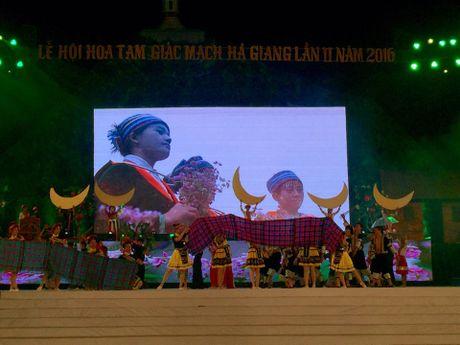 Khai mac Le hoi hoa tam giac mach lan thu 2 nam 2016 - Anh 3
