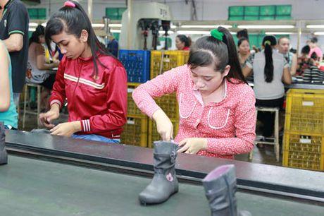 TP HCM: Doanh nghiep no BHXH hon 2.750 ti dong - Anh 1