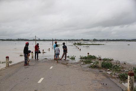 Quang Tri thiet hai nang ne trong loc xoay, mua lu - Anh 1