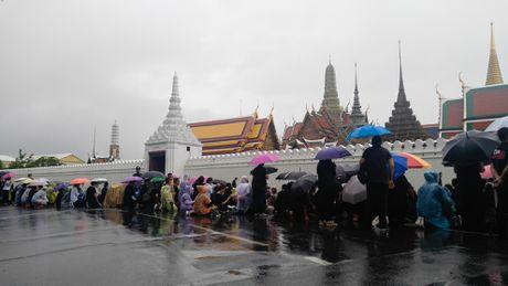 Nguoi Thai doi mua cho vieng Quoc vuong Bhumibol - Anh 3